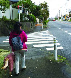 誘導ブロックの設置がのぞまれる歩道